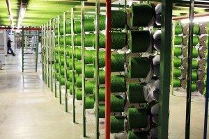 Cómo se produce el césped artificial