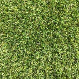 Royal Grass Sense
